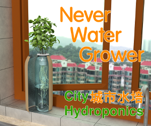 Never Water Grower - HK Moms.png