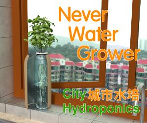 Never Water Grower - HK Moms.png